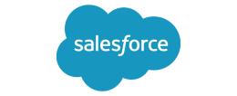 Sales Force - Website